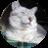 cat1@1x